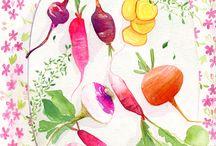 Food Illustrated