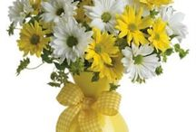 Bayrampaşa Çiçekçi 02126183741