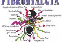 Fibromyalgi 1.