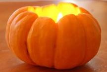 Fall into Thanksgiving  / by Priscilla Paesano
