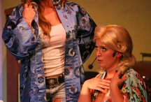 """The Great American Trailer Park Musical / Sept 7-Sept 30 only at The 6th Street Playhouse in Santa Rosa, CA. """"Adultery, strippers, murderous ex-boyfriends, Costco and the Ice Capades. Undeniable fun."""" -NY Post. There's a new tenant at Armadillo Acres-and she's wreaking havoc all over Florida's most exclusive trailer park. When Pippi, the stripper on the run, comes between the Dr. Phil-loving, agoraphobic Jeannie and her tollbooth collector husband-the storms begin to brew."""
