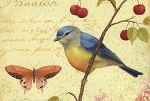 Birds / A collection of birds / by Lourdes Diaz