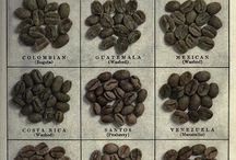 Coffee beans and roasting
