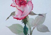 Akvarellit