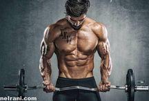 برنامه تمرینی جلو بازو و 5 حرکت کاملا تاثیر گذار برای این عضله