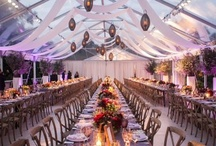 Wedding - Reception / by JM Photography