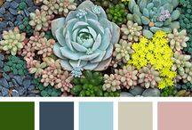 Цветовые сочетания