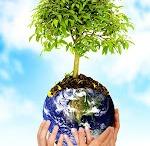 biofertilización / usar menos químico es posible, la fertilización biológica aporta lo que las plantas necesitan