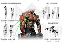 Gym prog