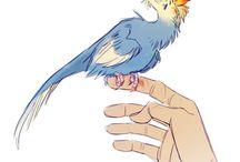 birds / #birds