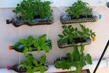 Decorações de jardim