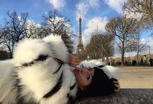 Paris / Couple in Paris love in Paris