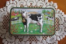 Kühe/Cows :-)
