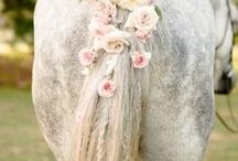 Weddings with horses <3