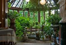 Atrium living