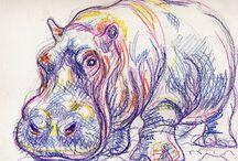 hipopotam rysunek