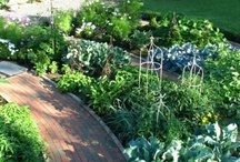 Pottager garden