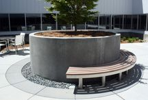 Apple Inc. Seating (California) / A pair of curved benches based on our standard tree seat design to go into an outdoor courtyard area in the Apple Inc headquarters in Cupertino, California.