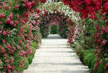 Down the Garden Path / Beautiful Gardens * Garden Inspiration / by Lisa ★ Berry
