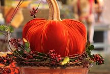 Fall Decorating / Fall is such a wonderful, colorful time of year.  Our ideas on this Fall Decorating board are ways to help you bring some of the autumnal colors indoors