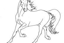 kreslení koní