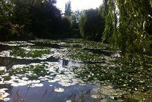 Jardin Claude Monet - Giverny (2015)