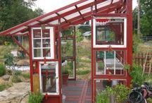 Kasvihuoneet ja puutarha