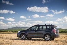 Forester na Jižní Moravě / Sen každého vinaře - Subaru Forester. Čím jiným obhlížet vinice a projíždět po nezpevněném povrchu?:)