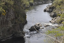 El río Ulla / Our rural house Pazo da Pena is located very near the river Ulla where you can practice the sport of fishing and hiking