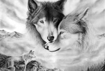Wolfies and Foxes