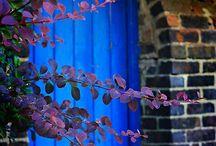 doors and the like / by Rita Harris