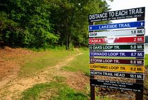 Hiking in Tuscaloosa / by Visit Tuscaloosa