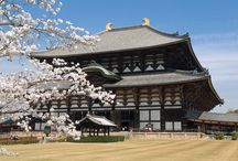 things for Japan 2015! / Info for my Japan 2015 trip / by adelphi mou