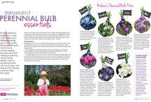 Bulbs & Spring Bloomers