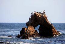 Le BEACH   / The ocean, waves, what ebb leaves behind on the beach