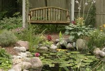 Garden and Backyard Ideas / by Lindsay Kay