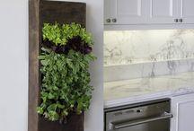 Kitchen Design Decor Ideas