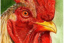 polli da pittori