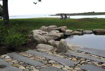 Gardens / Landscape Architecture