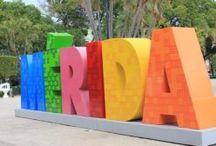 Merida - Mexico
