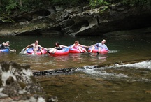 Outdoor Adventures / by Visit Sevierville