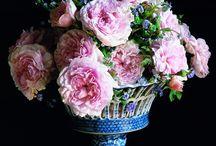 flowers / by Sammie Clark