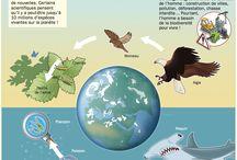 projet biodiversité