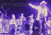 VIDEO REPORTAGE COLLINAREA 2013 / Alcuni frames tratti dal video reportage del Festival ©Moira Volterrani