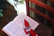 Shelf Elf...Connor will love this!!! / by Jaime Reinwald