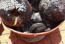 tropical fruit recipes