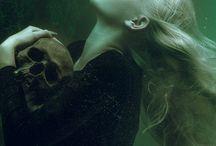 narcissa malfoy nee black