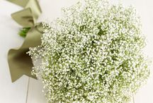 Holly & James / June 2014 - Pretty, vintage, quintessentially British - white, creams and mint green