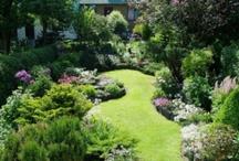 Örökzöldkert