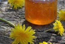 Naturens produkter / Opskrifter med ingredienser som du kan finde i naturen